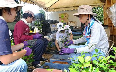 農場での実務作業を体験(椿園)